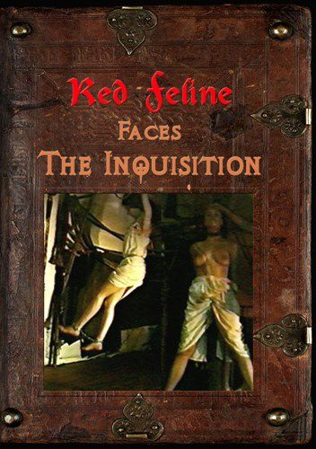 Red Feline Faces the Inquisition