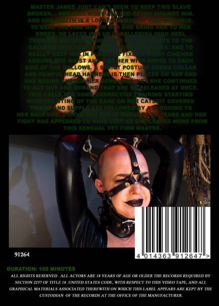 Insex - Double Features