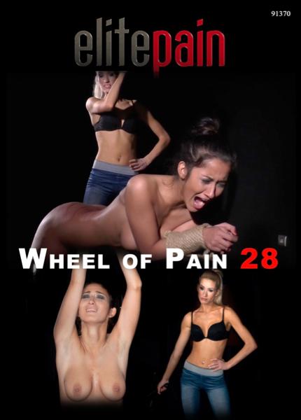 Of wheel pain pain elite elitepain search
