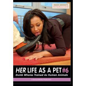 Her Life As A Pet 6