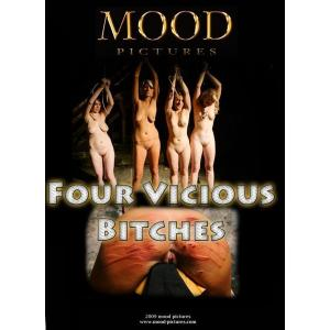 mood pictures four vicious bitches