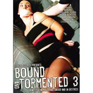 Bound and Tormented 3