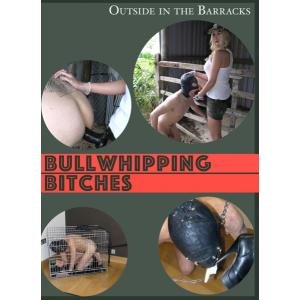 Bullwhipping Bitches