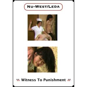 Witness to Punishments