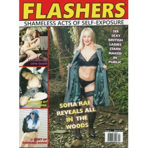 Flashers 2