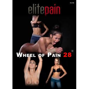 Wheel of Pain 28