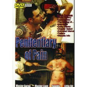 Penitentiary of Pain