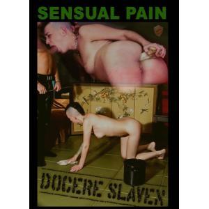 Docere Slavex