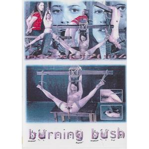 Insex - Burning Bush