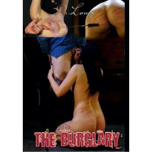 Dr. Lomp - The Burglary