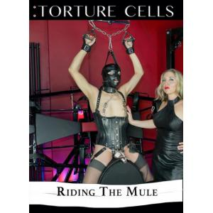 Torture Cells - Riding The Mule