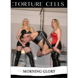 Torture Cells - Morning Glory