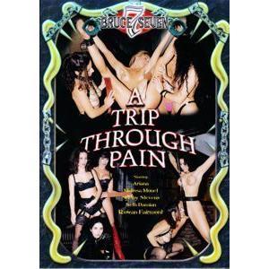 A Trip Through Pain