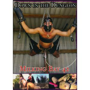 Down in the Dungeon - Milking Bay 42