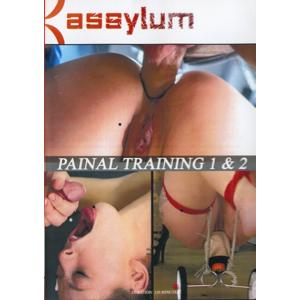 Assylum - Painal Training 1 & 2